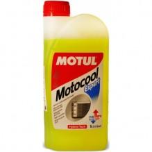 MOTUL Motocool Expert -25